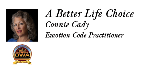 Connie Cady – A Better Life Choice Logo